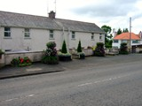 ulster in bloom 2012 (3)