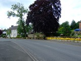 ulster in bloom 2012 (5)