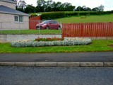 ulster in bloom 2012 (9)